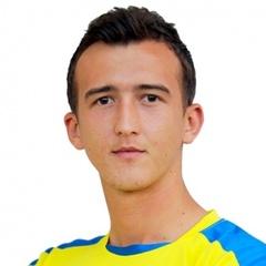 K. Horić