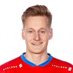 R. Karjalainen