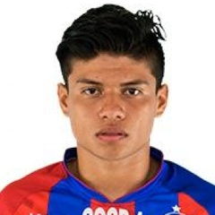 F. Castillo