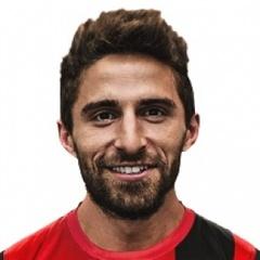 F. Borini