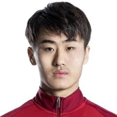 H. Liu