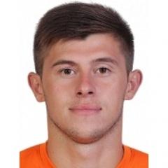M. Shvagirev