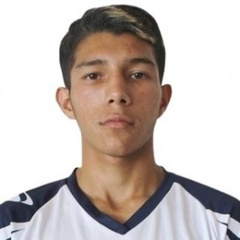 Michell Rodríguez