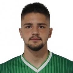 Bakir Brajlovic