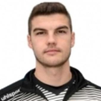 P. Vitanov