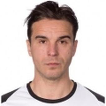 N. Gerzić