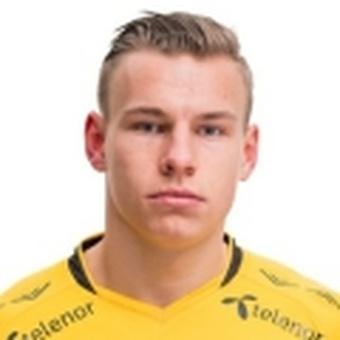 L. Sigurdsen