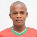 Gil Mineiro