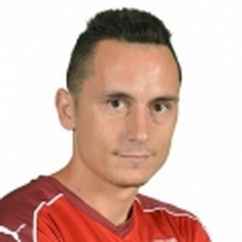 P. Ivanovici