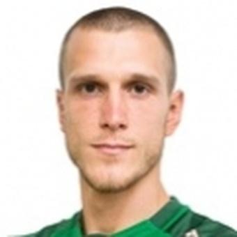 M. Gajic