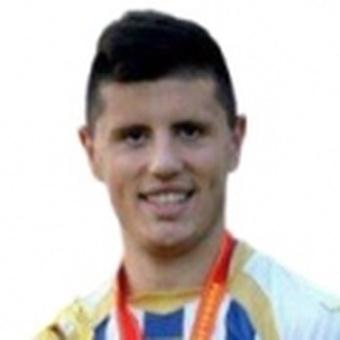 N. Globarevic
