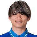 N. Fujimoto