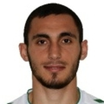 K. Ozdemir