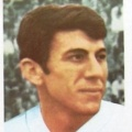 N. Lupescu