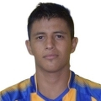 L. Ibarra