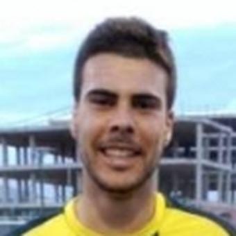 P. Llorens