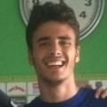 P. Fernandez