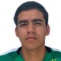 Octavio Vallecillo