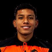 Ronaldo González
