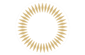 CONCACAF Champions