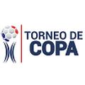 Copa Panamá
