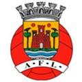 AF Leiria Divisão Honra