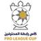 Taça Árabe do Golfo Emirates