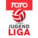Bundesliga Austria U16