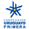 Apertura Uruguay