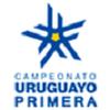 Torneo de Transición Uruguay