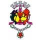 AF Coimbra Divisão de Honra