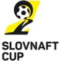 Coupe de Slovaquie