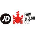 Taça de Gales