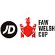 Copa de Gales