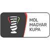 Copa Hungría