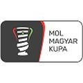 Coupe de Hongrie