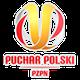 taça Polónia