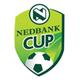 Taça Sul Africana