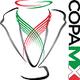 Copa México - Clausura