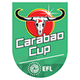 Capital One Cup