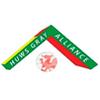 Cymru Alliance