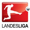 Landesliga Grupo 1