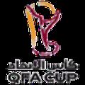 Copa QFA