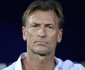 Saudi Arabia appoint Renard as coach