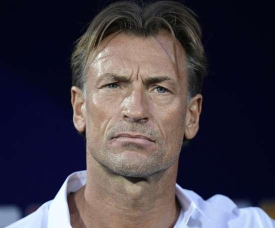 Saudi Arabia appoint Renard as coach