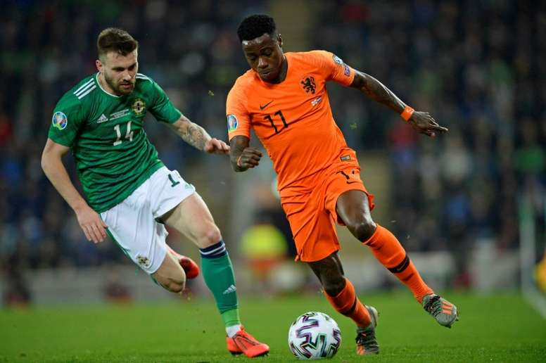 Netherlands book Euro 2020 place after Davis penalty miss. AFP