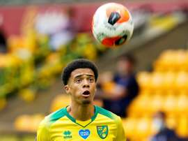 Jamal Lewis has signed for Newcastle from Norwich City. AFP