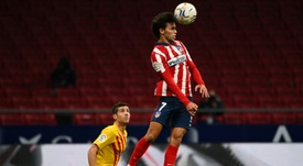 Atletico reaping the rewards as Felix finds his feet. AFP