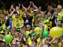Norwich came from behind to claim a point against Ipswich. AFP