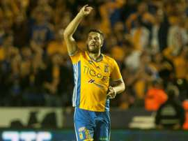 Tigres' forward Andre-Pierre Gignac saw a hypnotist so he could break a two month goal drought